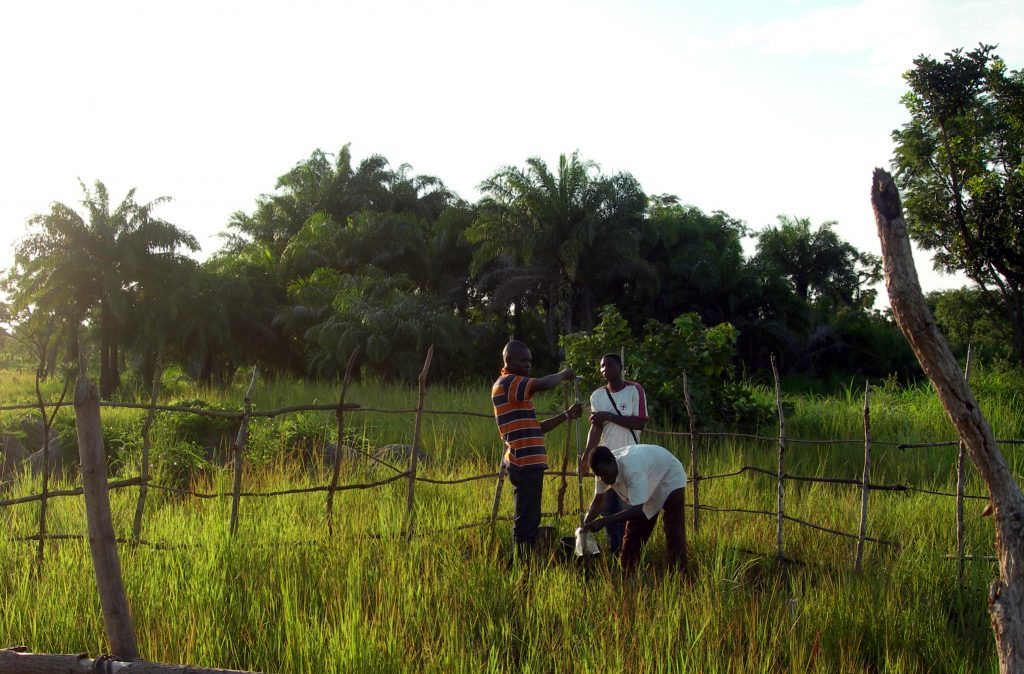 Étude géochimique de la nappe phréatique (Bénin)