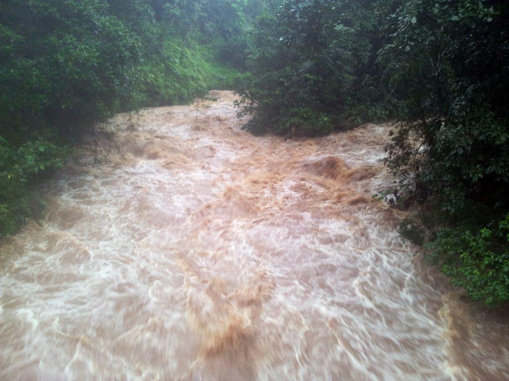Crue au niveau de la station hydrologique du site de la Maison de la Forêt, sur la rivière de Bras-David, le 22/12/2016.