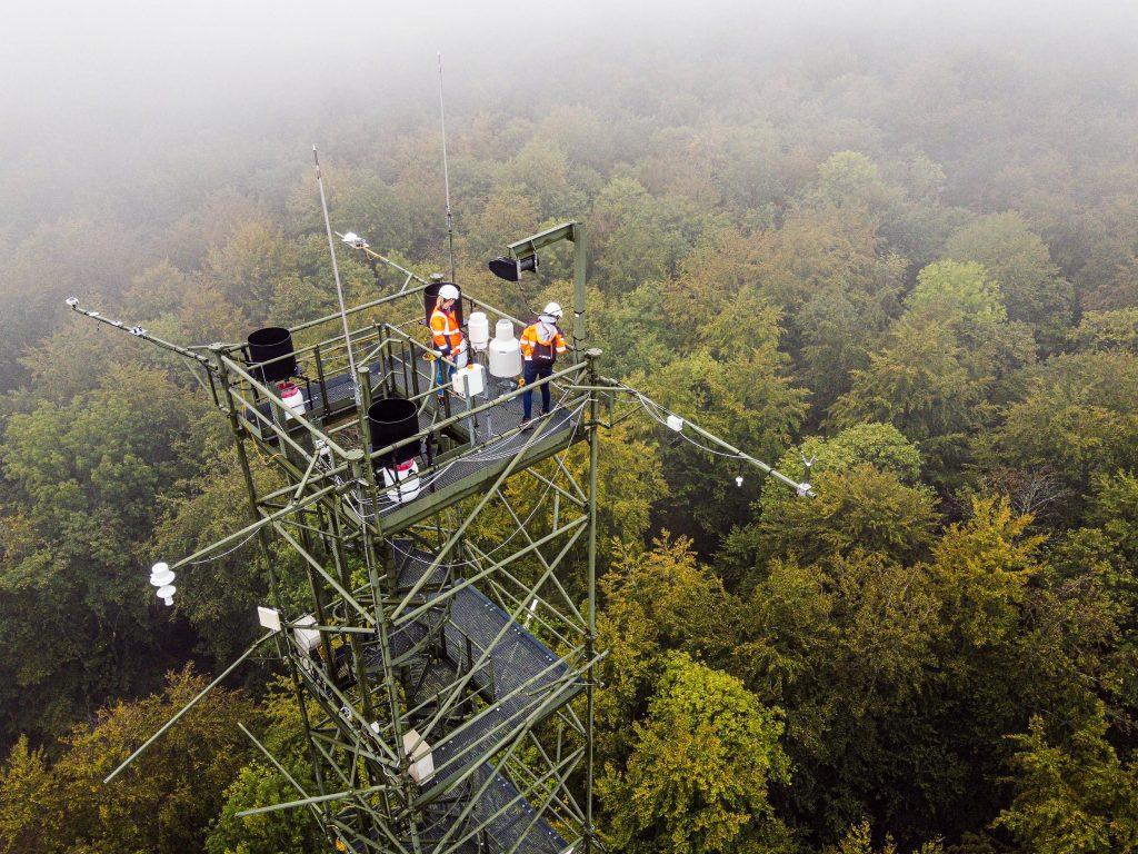 Station d'observation de l'écosystème forêt (tour à Flux).